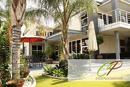 Cycad Palm Guesthouse