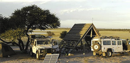 Bushlife-Safaris-copy